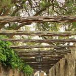 """Alamo Walkway"" by Groecar"