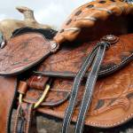 """020_Handmade_saddle_2"" by SouthBoundHound"