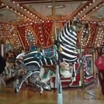 """""""Zebra Go Round"""" by SherryHolderHunt"""