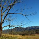 """Cades Cove"" by Lorraine_Sommer"