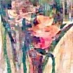 """daffodils"" by katiegab715"