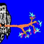 """""""owl"""" by katiegab715"""