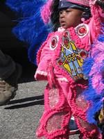 New Orleans, mardi gras indians 2010 040