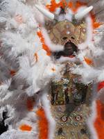 New Orleans, mardi gras indians 2010 030