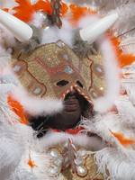 New Orleans, mardi gras indians 2010 029