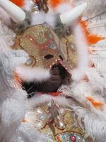 New Orleans, mardi gras indians 2010 028