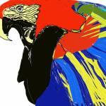 """""""Macaw"""" by MPMPatrick"""