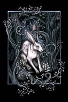 The Moon Hare