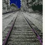 """""""Tracks into the night"""" by TamIshArt"""