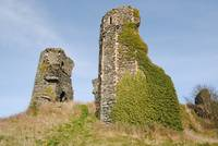 The Ruins, Moville, Donegal