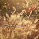 """Love"" by ivonaroz"