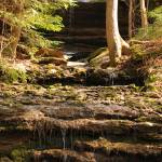 """""""Burgess Falls State Park"""" by loridouthat"""