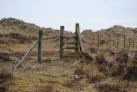The Stile, Murloch Beach, Newcastle