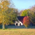 """Autumn Country 013"" by photographybydonna"