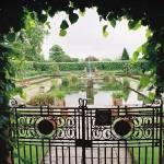 """London Garden"" by gailcorrow"