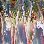 """January Palms"" by susanbattin"