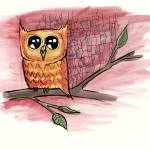 """Owl"" by PaulJohnson"