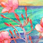 """Sunset Plumeria"" by laurenmcmullen"