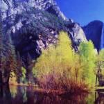 """""""Lake"""" by Schambon"""