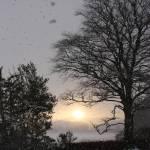 """Tournaig - Snow & Sun"" by MairiStephen"