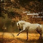 """""""Past is Gone"""" by Nikileid"""