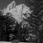 """Grand Teton Black & White"" by SamSherman"