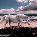 """A Wild Heart"" by Nikileid"