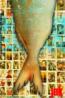 Fish on Vogue