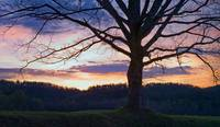 Cades Cove Sunset Panorama - Take 1