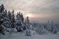 Winterlight at Liatoppen, Blefjell, Norway
