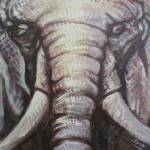 """""""Elephant Up Close"""" by soniacolonnamathis"""