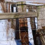 """Fence in Winter 1"" by PhotosforFun"