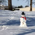 """Snowman 2"" by PhotosforFun"