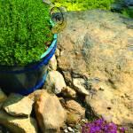 """""""Herb Garden"""" by chrisromano"""