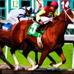 """Race Horses Santa Anita Park"" by johncorney"