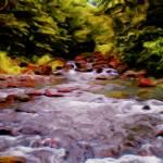 """""""Rapids"""" by mingoartstudio"""
