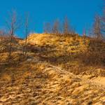 """Dune Top Grand Mere State Park Michigan"" by CEMiller"