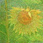"""""""Sunflower"""" by 1004art"""