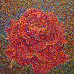"""""""Red rose"""" by 1004art"""