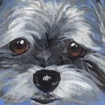 """Puppy Dog Eyes"" by TerryStanley"