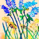 """""""lavender"""" by katiegab715"""