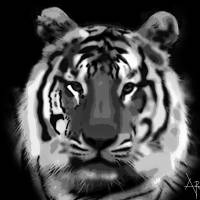 Pride and Confidence b&w Art Prints & Posters by Toritseju Oritsebinone