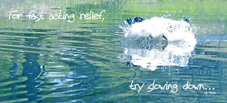 try slowing down...