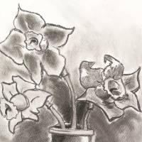 flower_in_vase Art Prints & Posters by Rannveig Ovrebo