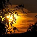 """""""GOLDEN LEAVES"""" by NaturePlusStudios"""