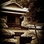 """Edo Museum (6)"" by TraceyAllen"