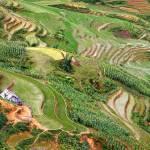 """""""Terraced Rice Fields in Sapa"""" by robkroenert"""