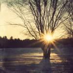 """Shine"" by MarilynBouchard"