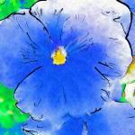 """Blue Flower"" by petersart"