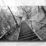 """60 Steps"" by lougheed"